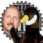 norm_goose